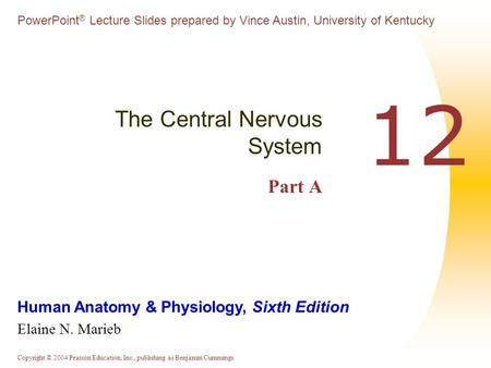 The Central Nervous System Part A