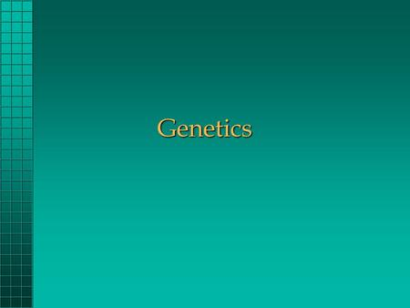 Genetics. What is Selection ? Mating animals to produce certain characteristics Low Birthweight Heavier Weaning Weight Color Horned or Polled Temperment.
