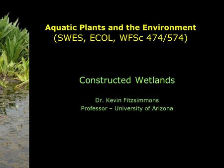 Aquatic Plants and the Environment (SWES, ECOL, WFSc 474/574) Constructed Wetlands Dr. Kevin Fitzsimmons Professor – University of Arizona.
