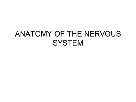 ANATOMY OF THE NERVOUS SYSTEM. The entire nervous system can be divided into two parts: 1- Central nervous system (CNS) –includes the brain and spinal.