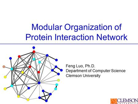 Modular Organization of Protein Interaction Network Feng Luo, Ph.D. Department of Computer Science Clemson University.