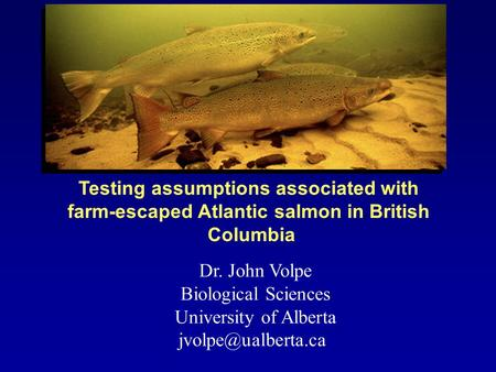 Dr. John Volpe Biological Sciences University of Alberta Testing assumptions associated with farm-escaped Atlantic salmon in British.