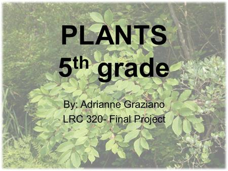 PLANTS 5 th grade By: Adrianne Graziano LRC 320- Final Project.