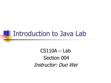 Introduction to Java Lab CS110A – Lab Section 004 Instructor: Duo Wei.