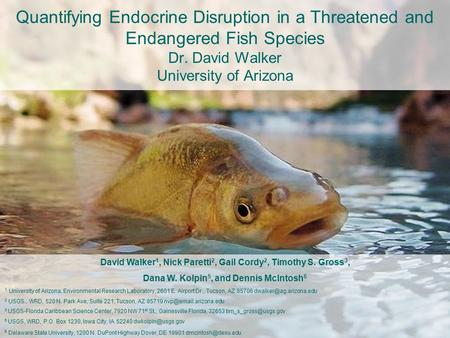 Quantifying Endocrine Disruption in a Threatened and Endangered Fish Species Dr. David Walker University of Arizona David Walker 1, Nick Paretti 2, Gail.