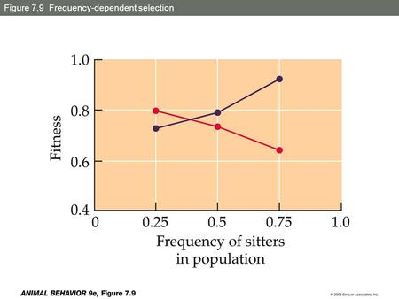 Figure 7.9 Frequency-dependent selection
