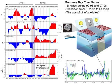 Monterey Bay Time Series - El Niños during 92-93 and 97-98 - Transition from El Viejo to La Vieja - The age of dinoflagellates?