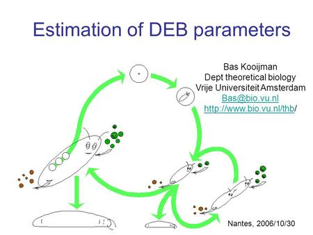 Estimation of DEB parameters Bas Kooijman Dept theoretical biology Vrije Universiteit Amsterdam