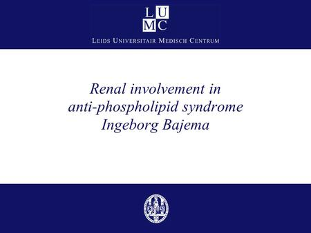 Renal involvement in anti-phospholipid syndrome Ingeborg Bajema