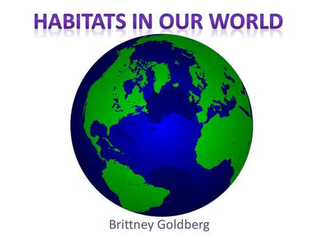 Brittney Goldberg. Definition--> The natural environment in which organisms live. Provides protection Provides food Provides shelter.