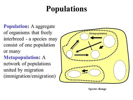 Populations Population: A aggregate of organisms that freely interbreed - a species may consist of one population or many Metapopulation: A network of.