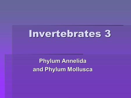 Invertebrates 3 Phylum Annelida and Phylum Mollusca.