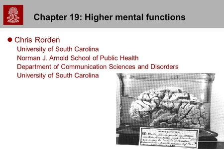 1 Chapter 19: Higher mental functions Chris Rorden University of South Carolina Norman J. Arnold School of Public Health Department of Communication Sciences.