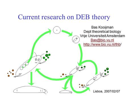 Current research on DEB theory Bas Kooijman Dept theoretical biology Vrije Universiteit Amsterdam