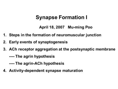 Synapse Formation I April 18, 2007 Mu-ming Poo 1.Steps in the formation of neuromuscular junction 2.Early events of synaptogenesis 3.ACh receptor aggregation.