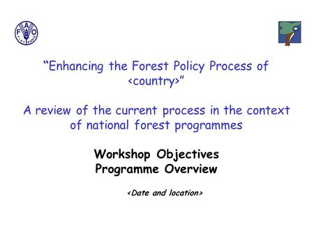 """Enhancing the Forest Policy Process of "" A review of the current process in the context of national forest programmes Workshop Objectives Programme Overview."