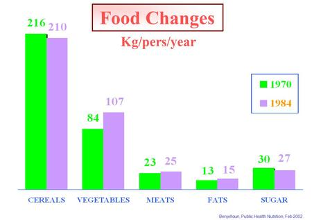 Benjelloun, Public Health Nutrition, Feb 2002 Food Changes Kg/pers/year.