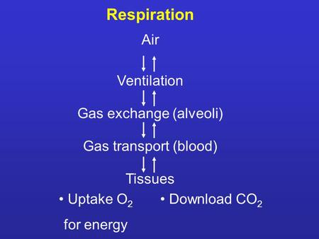 Respiration Air Ventilation Gas exchange (alveoli) Gas transport (blood) Tissues Uptake O 2 for energy Download CO 2.