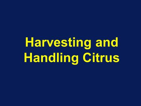 Harvesting and Handling Citrus. Harvesting Methods Manual –Min. Maturity standards (refer Table 1. in MLA's paper) –Ladders and picking containers –Pulled.