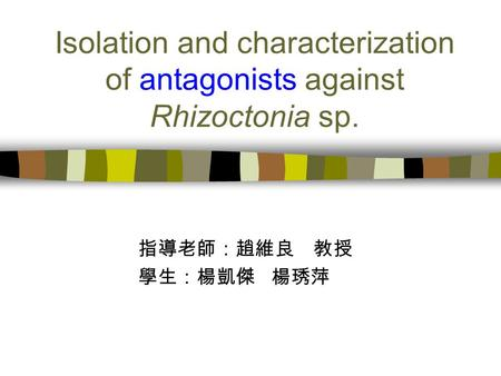 Isolation and characterization of antagonists against Rhizoctonia sp. 指導老師:趙維良 教授 學生:楊凱傑 楊琇萍.