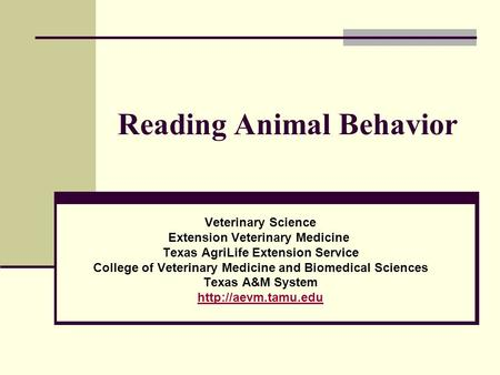 Reading Animal Behavior Veterinary Science Extension Veterinary Medicine Texas AgriLife Extension Service College of Veterinary Medicine and Biomedical.