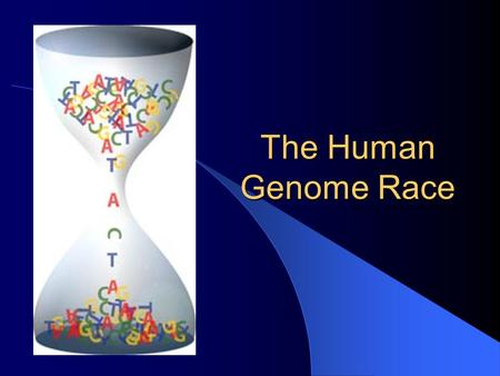 The Human Genome Race. Collins vs. Venter Collins Venter.