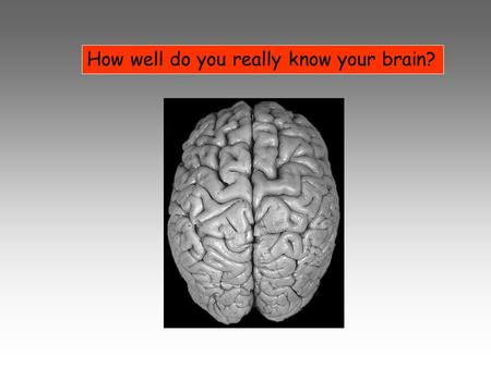 How well do you really know your brain?. Brain Facts 1.How much does your brain weigh (adult)? 2.How much at birth? 3.Your brain accounts for what percentage.