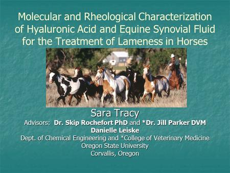 Molecular and Rheological Characterization of Hyaluronic Acid and Equine Synovial Fluid for the Treatment of Lameness in Horses Sara Tracy Advisors:Dr.