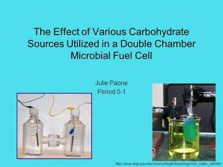 The Effect of Various Carbohydrate Sources Utilized in a Double Chamber Microbial Fuel Cell Julie Paone Period 0-1 http://www.engr.psu.edu/ce/enve/logan/bioenergy/mfc_make_cell.htm.