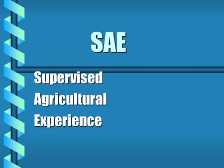 SAE SupervisedAgriculturalExperience. What are my agricultural interests? b Students have SAE's to: provide agricultural experiencesprovide agricultural.
