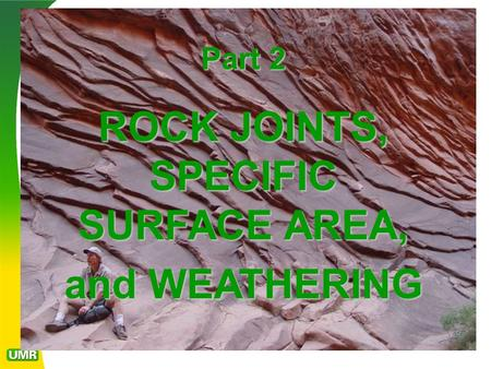 ROCK JOINTS, SPECIFIC SURFACE AREA,
