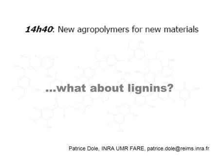 Patrice Dole, INRA UMR FARE, …what about lignins?