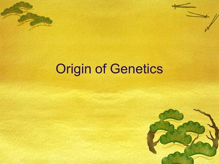 Origin of Genetics. All of your traits come from your parents  Hair color  Eye color  Height  Weight.