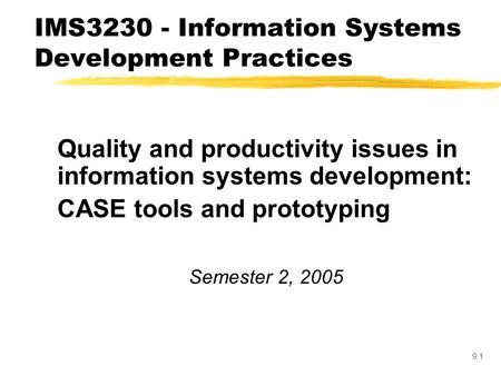 IMS Information Systems Development Practices
