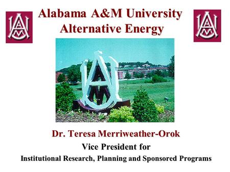 Alabama A&M University Alternative Energy Dr. Teresa Merriweather-Orok Vice President for Institutional Research, Planning and Sponsored Programs.