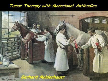 Tumor Therapy with Monoclonal Antibodies