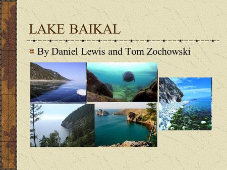 LAKE BAIKAL By Daniel Lewis and Tom Zochowski. BIOLOGY There are more than 2600 species and varieties of animal and over 1000 species of plants in Baikal.