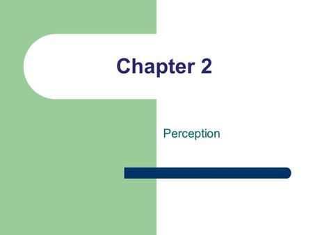 Chapter 2 Perception. Perception is Important Differences in perception are widespread Not all differences are of equal importance Not everyone's perceptions.