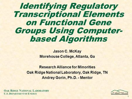 O AK R IDGE N ATIONAL L ABORATORY U.S. D EPARTMENT OF E NERGY 1 Identifying Regulatory Transcriptional Elements on Functional Gene Groups Using Computer-