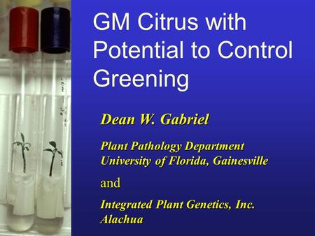 Dean W. Gabriel GM Citrus with Potential to Control Greening Integrated Plant Genetics, Inc. Alachua and Plant Pathology Department University of Florida,