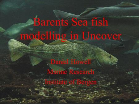 Barents Sea fish modelling in Uncover Daniel Howell Marine Research Institute of Bergen.