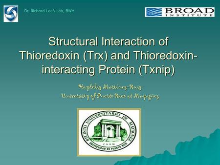 Structural Interaction of Thioredoxin (Trx) and Thioredoxin- interacting Protein (Txnip) Haydeliz Martínez-Ruiz University of Puerto Rico at Mayagüez Dr.