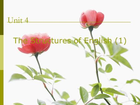 Unit 4 The Structures of English (1). Contents 5.1 Defining syntax (句法学) 5.2 Syntactic patterns in English 5.3 Syntactic relations 5.4 The hierarchical.