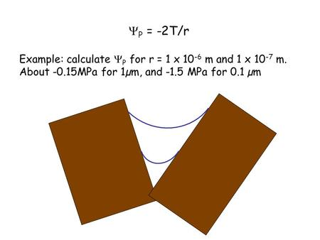  P = -2T/r Example: calculate  P for r = 1 x 10 -6 m and 1 x 10 -7 m. About -0.15MPa for 1µm, and -1.5 MPa for 0.1 µm.