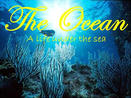 The Ocean A life under the sea. Just the facts… The ocean covers about 70% of the earths surface and contains 97% of the earth's water supply! There are.