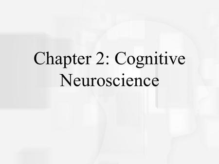 Cognitive Psychology, Fifth Edition, Robert J. Sternberg Chapter 2 Chapter 2: Cognitive Neuroscience.