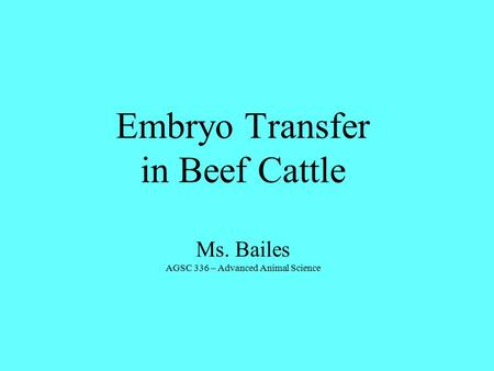 Embryo Transfer in Beef Cattle Ms