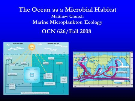 The Ocean as a Microbial Habitat Matthew Church Marine Microplankton Ecology OCN 626/Fall 2008.