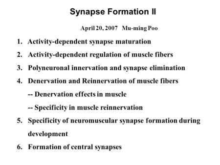 Synapse Formation II April 20, 2007 Mu-ming Poo 1. Activity-dependent synapse maturation 2.Activity-dependent regulation of muscle fibers 3.Polyneuronal.