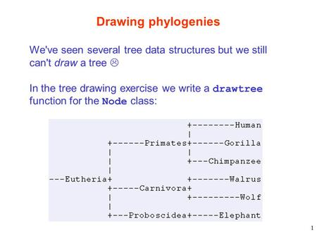 1 Drawing phylogenies We've seen several tree data structures but we still can't draw a tree  In the tree drawing exercise we write a drawtree function.